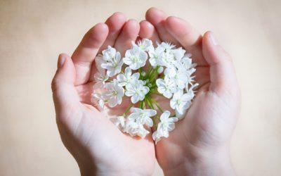 PRÁCTICA MINDFULNESS: ATIÉNDETE y SIENTE