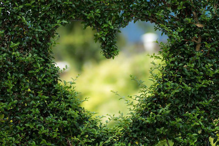 AMOR : Amar a un ser humano es hacerle libre