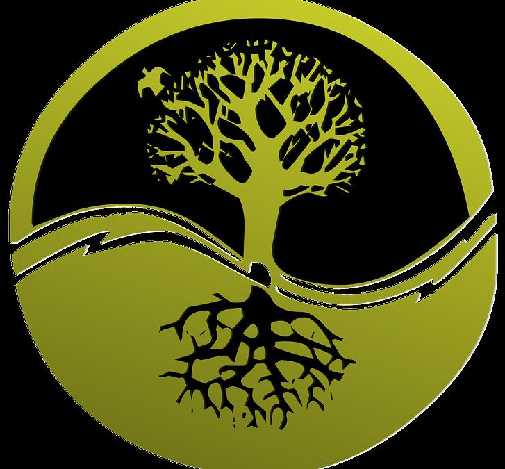 7 de ABRIL VIERNES- PRÓXIMO TALLER CONSTELACIONES FAMILIARES