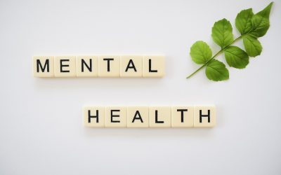 Curso On-line de Mindfulness y Meditación: Aprende a parar tu mente y alcanzar el bienestar en tiempo de incertidumbre.