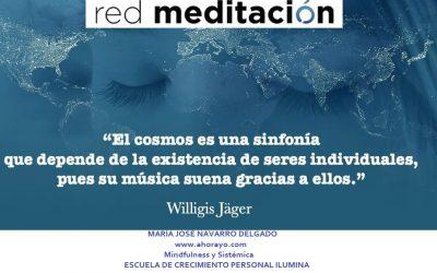 Meditación en Red y Mindfulness los Martes
