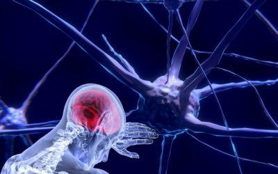 MINDFULNESS Y COMPASIÓN efectos a nivel psíquico y físico. EJERCICIO